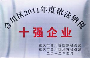 2011年度依法纳税十强企业