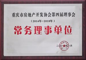2014—2018年重庆市澳门金莎娱乐网站开发协会第四届理事会常务理事单位